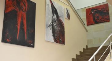 Wystawa Iwony Ostrowskiej w Okregowej Izbie Radców Prawnych