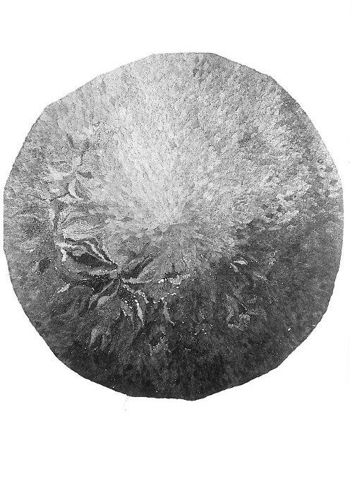 """Kolidia """"Złota rybka"""" wym. 250x270 cm wł. pryw."""
