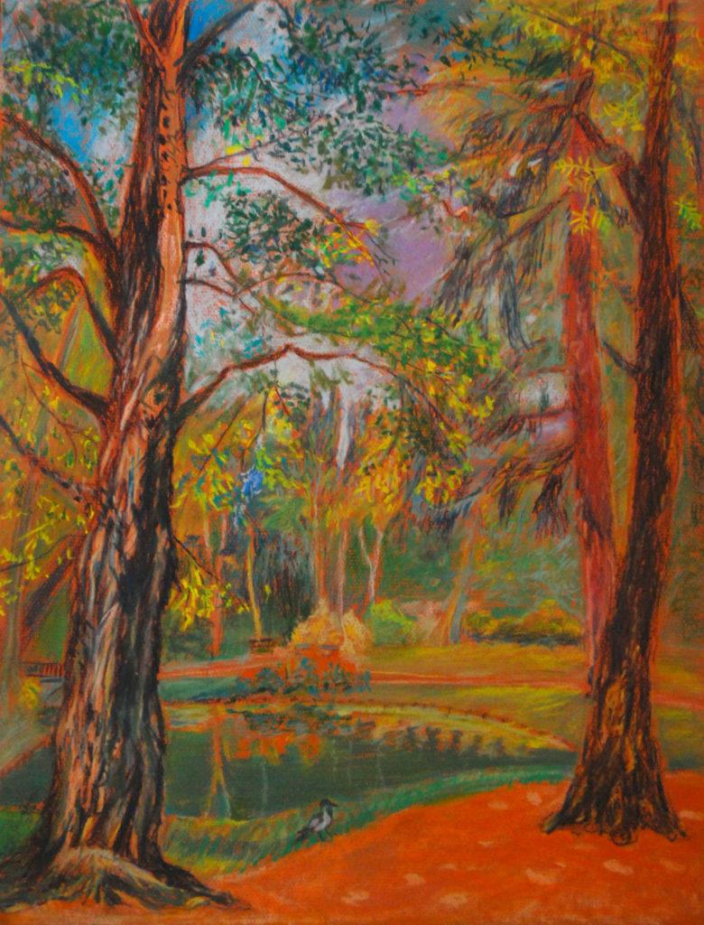 drzewa w Łazienkach